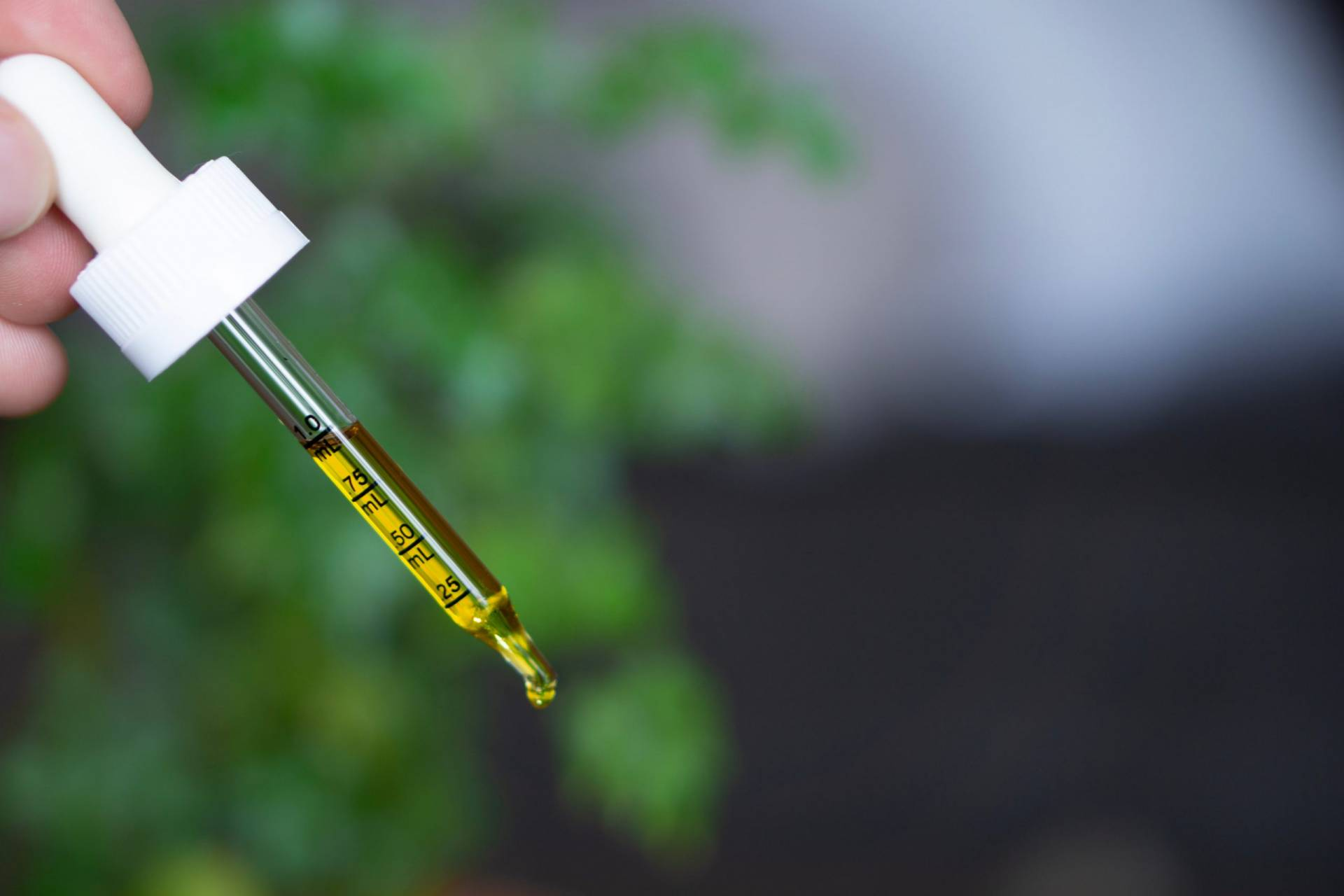 With CBD Market Booming, Let's Look Ahead