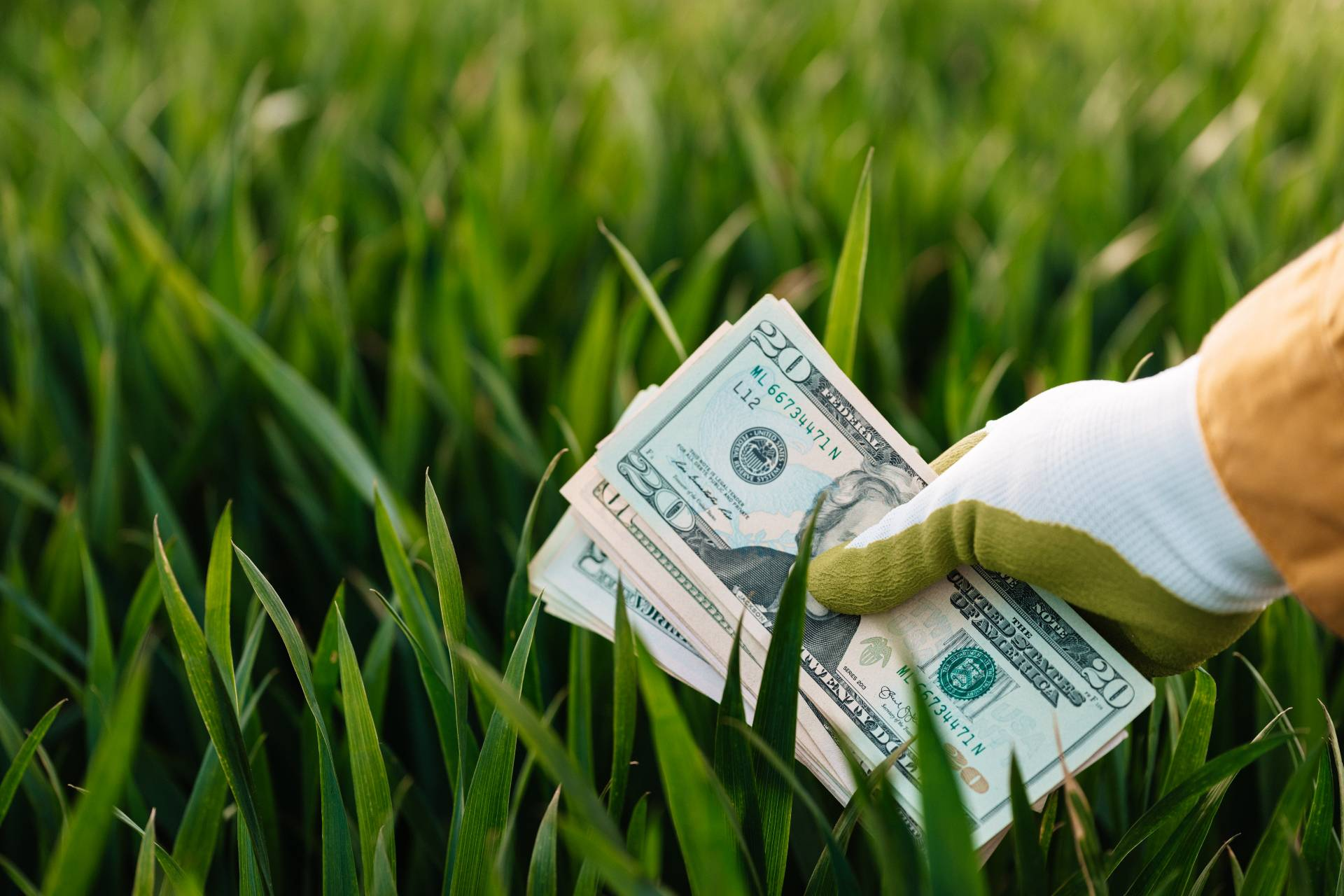 Many business owners confuse passive income for get-rich-quick schemes, but most passive income sources will require some investment upfront.