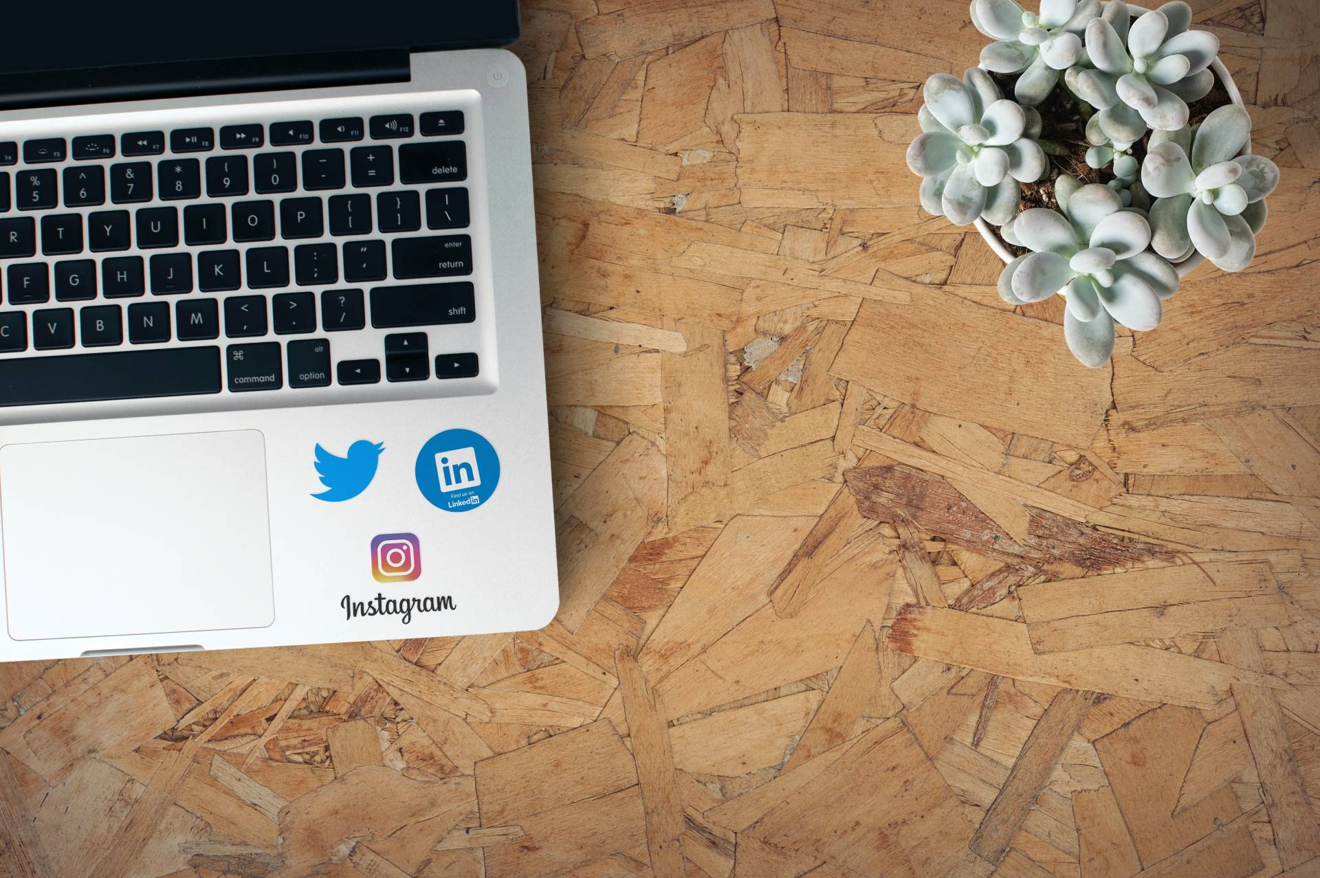 Social Media and Increased Conversion Rates: A Quick Primer