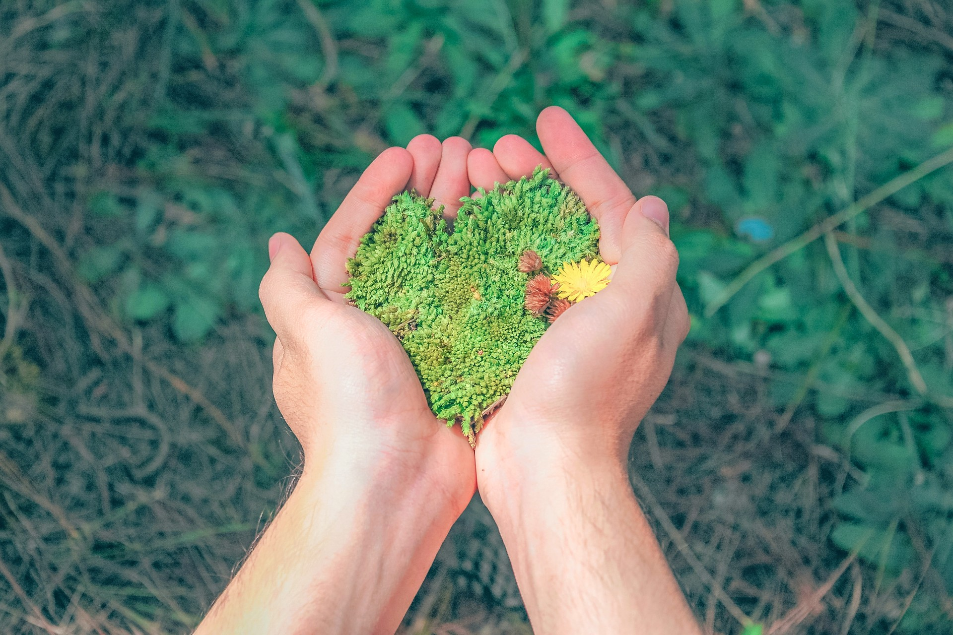 Eco-minded entrepreneurs are increasingly demonstrating that profit and sustainability are not mutually exclusive and can build brand loyalty.