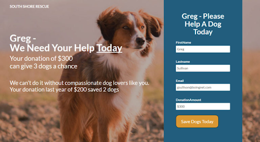 South Shore Rescue Landing Page with Incorporated Personalization